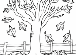 Maple Tree Coloring Page