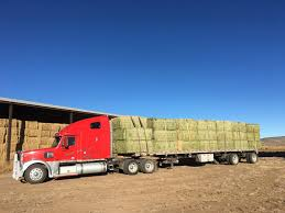 Organic Grass Hay From The San Luis Valley, Colorado Hay For Sale In Boon Michigan Boonville Map Outstanding Dreams Alpaca Farm Phil Liske Straw Richs Cnection Peterbilt 379 At Truckin Kids 2013 Youtube Bruckners Bruckner Truck Sales Lorry Stock Photos Images Alamy Mitsubishi Raider Wikipedia For Lubbock Tx Freightliner Western Star Barmedman Motors Cars Sale In Riverina New South Wales On Economy Mfg Dennis Farms Equipment Auction The Wendt Group Inc Land And
