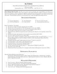 Endearing Sample Resumes Of Sales Managers In It Resume Example Channel Manager Cv Rnei