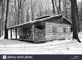 A lone cabin in the woods Stock Royalty Free Image