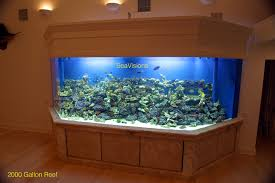 Custom Aquariums I Really Want A Jellyfish Aquarium Home Pinterest Awesome Fish Tank Idea Cool Ideas 6741 The Top 10 Hotel Aquariums Photos Huffpost Diy Barconsole Table Mac Marlborough Tank Stand Alex Gives Up Amusing Experiments 18 Best Fish Images On Aquarium Ideas Diy Clear For Life Hexagon Hayneedle Bar Custom Tanks Ponds Designs For Freshwater Modern 364 And Tropical Ov Cylinder 2
