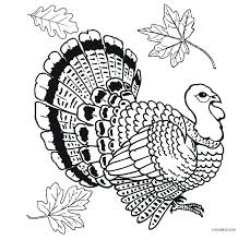 Free Turkey Coloring Pages For Preschoolers Printable Kids