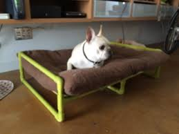 Diy Elevated Dog Bed Image For Cute Dog Beds Uk This Time I