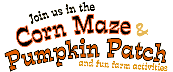 Pumpkin Patches Near Colorado Springs Co by The Denver Colorado Area Pumpkin Patches Corn Mazes Hayrides