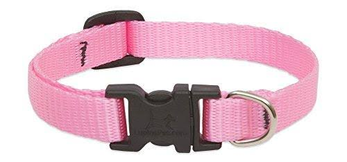 "Lupine Pet Basics Adjustable Collar for Small Dogs - Pink, 1/2"" x 8/12"""