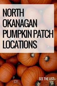 Pumpkin Patch Fort Collins by Best 25 Pumpkin Patch Locations Ideas On Pinterest Pumpkin