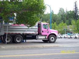 Amber And Amethyst: Hockey And Knitting Used 14 Ft For Sale 1517 Sanrio Hello Kitty Diecast 6 Inch End 21120 1000 Am 2017 Kenworth T300 Heavy Duty Dump Truck For Sale 1530 Miles Atco Hauling Pink Caterpillar Water Tanker Reposted By Dr Veronica Lee Dnp Truck China Special Salesruvii Vehicle Safetyshirtz Safety Shirt Pinkblack Safetyshirtz Isuzu Sales Dump Truck 2008 Kenworth T800 Tri Axle In Ms 6201 Green Toys Made Safe In The Usa Ming 50ton