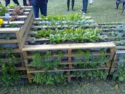 Cute Pallet Gardens Decor Ideas At Backyard Decorating Ideas Fresh