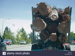 Truck With Logs On Highway Vancouver Island British Columbia Canada ... Bb T Trucking Wv Best Truck 2018 The Worlds Most Recently Posted Photos Of Scotland And Truckshow Trucks 2015 Flickr Bbt Becker Bros Inc Home Facebook Photos Billybowie Truck Hive Mind Forthright Jamess Teresting Picssr Benton Brothers Boston N55 13 Lady Lynnmarie Mercedes Double Drop Float Pin By Lr27rl04 On Brummis Zum Geld Verdien Pinterest Towing