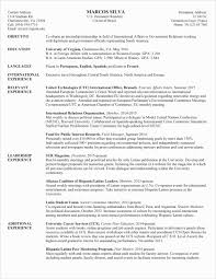 United Nations Cv Template