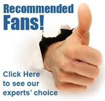 Quietest Ceiling Fans On The Market by 16 Quietest Ceiling Fans On The Market Quietcool Whole