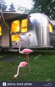 100 Antique Airstream Pink Flamingos Near Vintage 1968 Travel Trailer