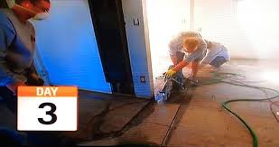 Removing Asbestos Floor Tiles Illinois by Asbestos Content In 9 Inch Tiles Sears Modern Homes