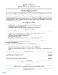 Auto Sales Manager Cover Letter New Car Salesman Resume Example Examples