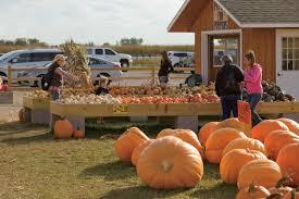 Pumpkin Farms In Channahon Illinois by Photos Around Minooka Village Of Minooka