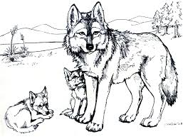 Printable Free Wolf Coloring Pages For Adults In Nature