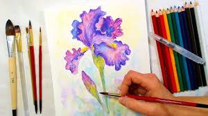 Watercolour Pencils Artwork Iris Watercolor Pencil Drawing And Painting Tutorial December
