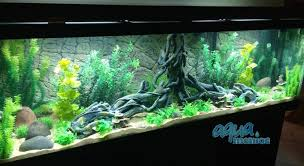 juwel aquarium vision 260 aquarium background for juwel aquarium vision 260 3d thin rock