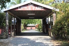 Pumpkin Patch Coconut Grove Groupon by Little Farm Pumpkin Patch Florida Haunted Houses