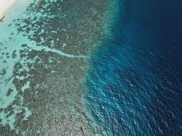 100 Conrad Maldive Snorkeling At The Madlives Rangali Island Guide House Reef