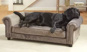 5 Best Dog Sofa Beds Cushy Dog Couches for Canine fort