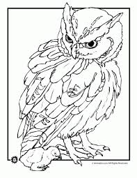 Realistic Animal Coloring Pages