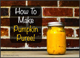 Preparing Fresh Pumpkin For Pies by How To Make Pumpkin Puree U0026 Preserve It For Use All Year