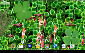 Halloween Live Wallpapers For Pc by Koi Fish Aquarium Live Wallpaper 3d Android Apps On Google Play