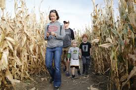 Free Pumpkin Patch Fort Collins by Harvest Farm Fall Festival