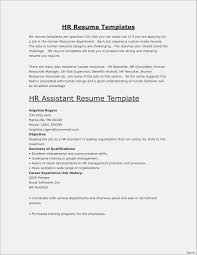 Volunteer Experience On Resume Examples Valid Example