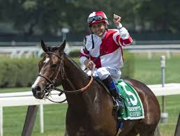 Halloween 6 Online Castellano by Champion Filly Songbird Retired Times Union