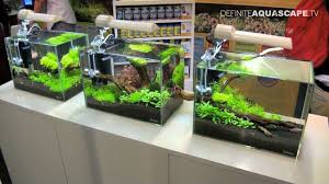 Aquascaping - Aquarium Ideas From Aquatics Live 2011, Part 1 - YouTube Home Accsories Astonishing Aquascape Designs With Aquarium Minimalist Aquascaping Archive Page 4 Reef Central Online Aquatic Eden Blog Any Aquascape Ideas For My New 55g 2reef Saltwater And A Moss Experiment Design Timelapse Youtube Gallery Tropical Fish And Appartment Marine Ideas Luxury 31 Upgraded 10g To A 20g Last Night Aquariums Best 25 On Pinterest Cuisine Top About Gallon Tank On Goldfish 160 Best Fish Tank Images Tanks Fishing