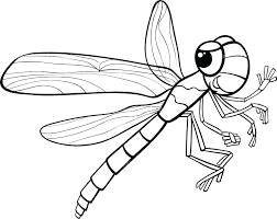 Free Dragonfly Coloring Pages Page Pictures Modest Cute Exceptional F