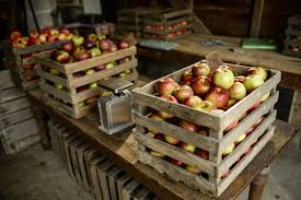 Pumpkin Farms In Bay County Michigan by Guide To Ann Arbor Area Cider Mills And Apple Orchards Mlive Com