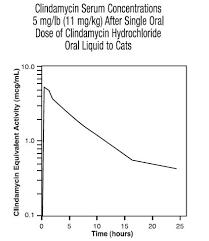 clindamycin for cats clindamycin hydrochloride liquid