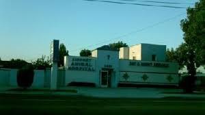 airport animal hospital airport animal hospital in fullerton ca 92833 citysearch