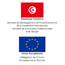 bureau d emploi tunis le ministère du développement de l investissement et de la