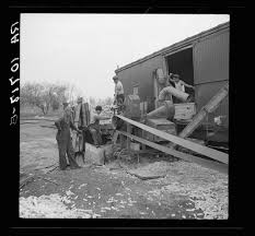 The Great American Pumpkin Patch Arthur Il by 21 Rare Photos Taken In Illinois During The Great Depression