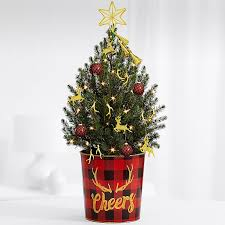 Christmas Tree Shop So Portland Maine by Mini Christmas Tree Delivery Send Real Decorated Mini Trees