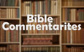 What Is A Bible Commentary