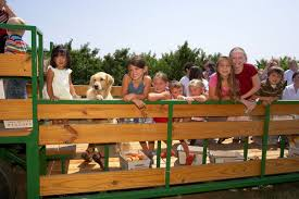 Eckerts Pumpkin Patch St Louis Mo by Take In Fall In St Louis With These Five Hayrides