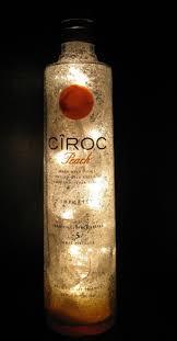Nuka Cola Lava Lamp by 16 Best Liquor Bottles Images On Pinterest Liquor Bottles