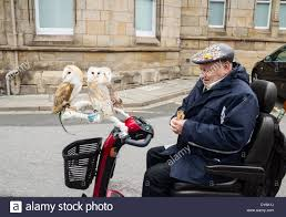 Elderly Man With Three Pet Barn Owls On Mobility Scooter In Stock ... You Me Pitch Roof Dog Kennel Small Petbarn Pet Barn Leads On Pet Christmas Gifts Australian Newsagency Blog Amazoncom Petmate Houses Supplies Petbarn Pty Ltd Chatswood Nsw Merchant Details Double Medium Blacktown Mega Centre The Local Business Rothwell Redcliffe Australia Signs Store Stock Photo My 3 Rescue Chis Decked Out For December Holidays 2015 Fab Hermit Crab Enclosure Vanessa Pikerussell Flickr Pleasant Royal Canin German Spherd Food 12kg Pet2jpg