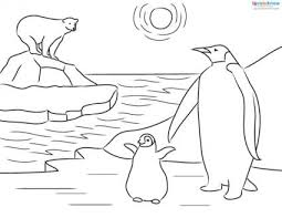 The Life Of Antartica Penguins Educational Coloring Pages