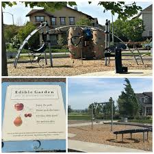 Pumpkin Patch Preschool Santa Rosa Ca by The Everyday Momma Petaluma Playground Guide