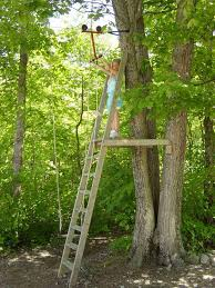 Zipline Tree Fort Note: Great Structure And Support Ideas. Ladder ... Backyard Zipline Completed Photo On Stunning Zip Line No Tree Houses Lines 25 Unique Line Backyard Ideas On Pinterest Zipline What Do You Guys Think Of This Kids Guy A Most Delicious French Country Home In My Village Family Ideas Best How To Build Platform Home Outdoor Decoration Movie Theater Screens Refuge Youtube Landscaping For