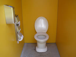 Six Reasons To Put The Toilet Lid Down | Dengarden Country Home Bath And Cosy Armchair In Bathroom Stock Photo Toilet Russcarnahancom Bewitch Pictures Chair Height Bowl Delight Brown If You Want To Go For The Royal Flush Then Maybe This Is Armchairs Vintage Made Wooden Metal 114963907 Porta Potti Qube 365 Chemical Portable Nrs Healthcare Allmodern Custom Upholstery Warner Big Reviews Wayfair Mab Poltroncina Blog Padded Vieffetrade Shower Depot Seat Lowes Vanity With Rare Modern Morris With Adjustable Back By Edward Wormley Definite Foam Moldcast Model Mobiliario Proceso De Diseo