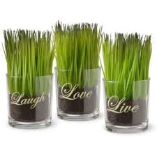 Pot Plants For The Bathroom by Artificial Plants For Less Overstock Com