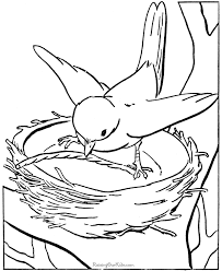 Animal Homes Coloring Pages Asthenic