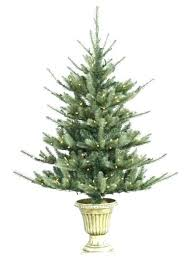 4 5 Foot Trees To Lit Potted Blue Spruce Artificial Tree Balsam Hill